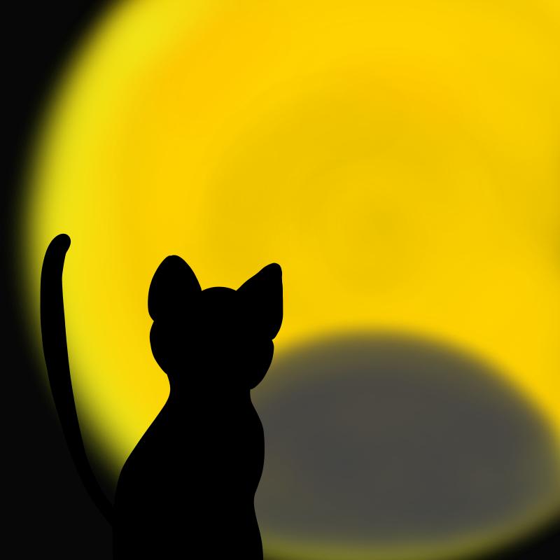 花見は月食の夜が狙い目!2015年の皆既月食は4月4日(土)