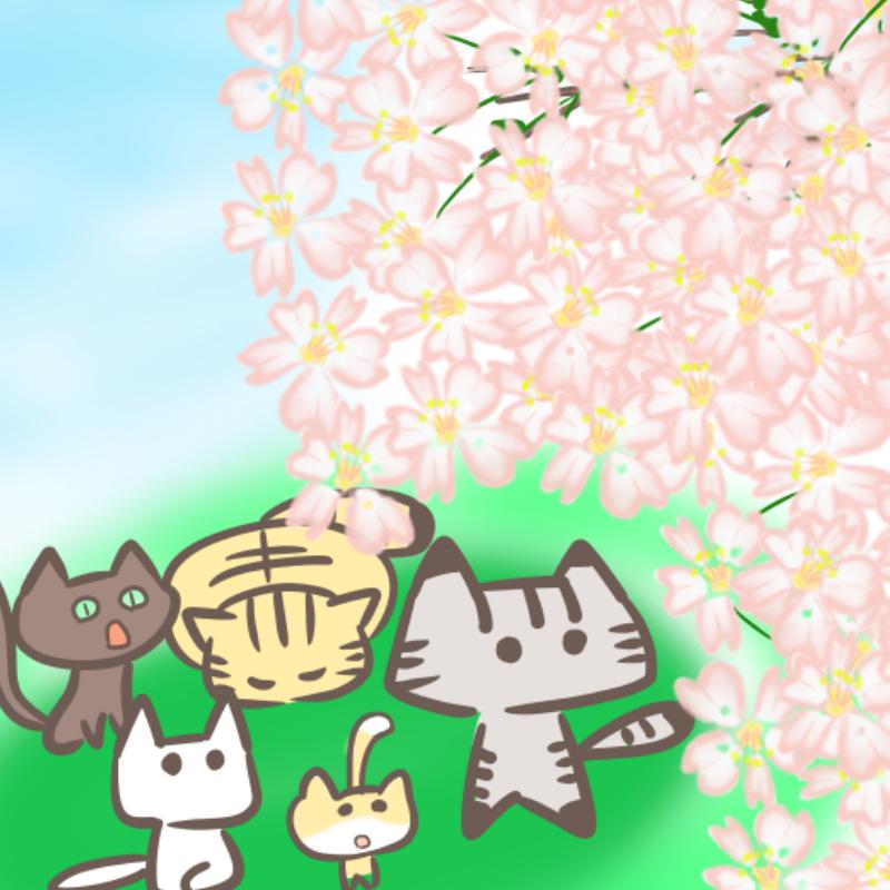 猫のお花見(アップ)